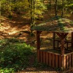 Heilbrunnen Pavillon/ Jiri Hampl